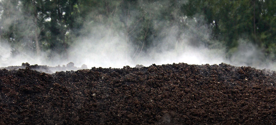 New Earth implements solutions such as: Composting